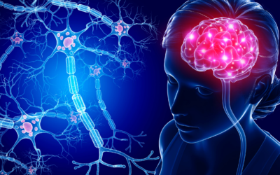 How Healthy Is Your Brain? Take This Brain Health Survey