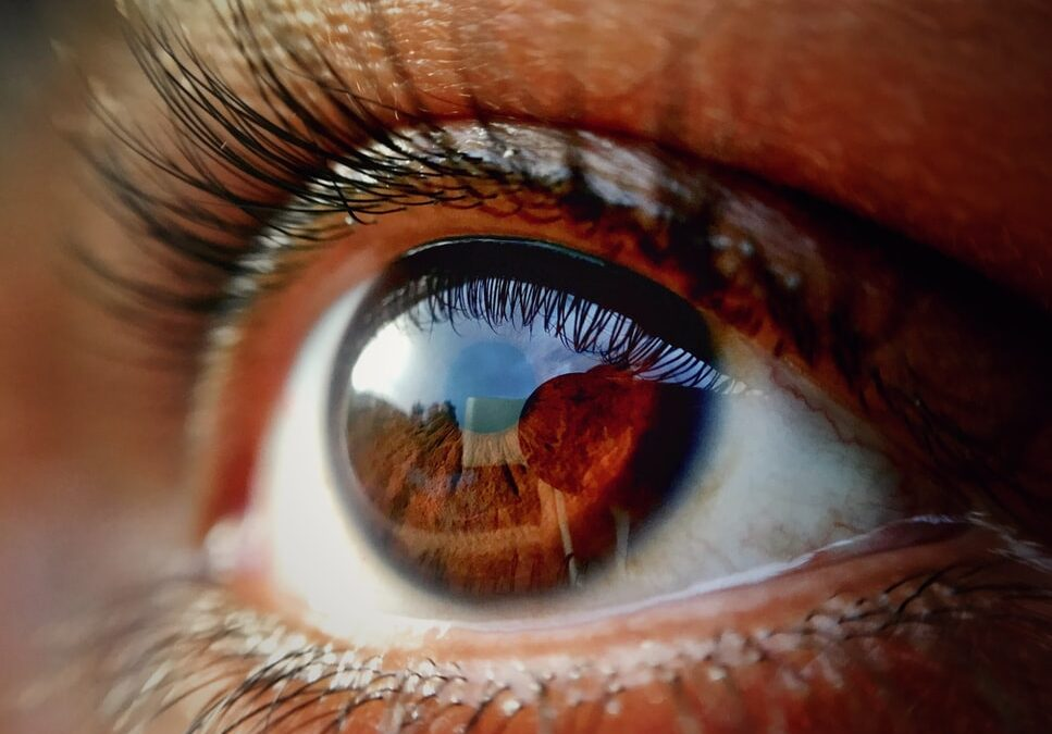 Leaky Eye Syndrome and Macular Degeneration