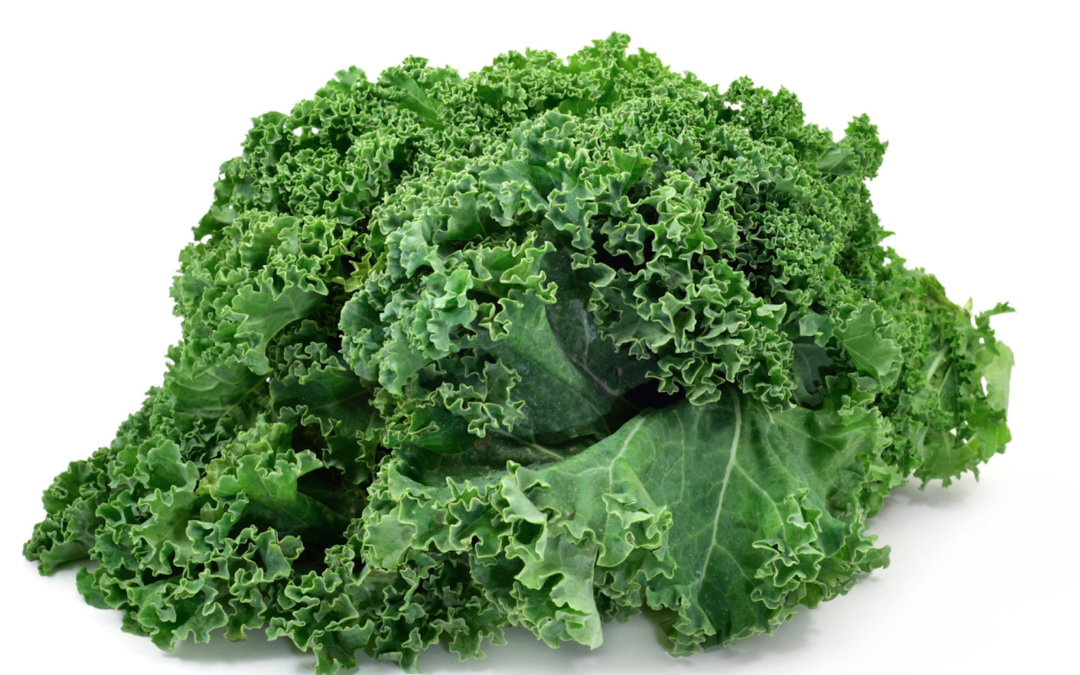 Top 3 Foods To Fight Macular Degeneration